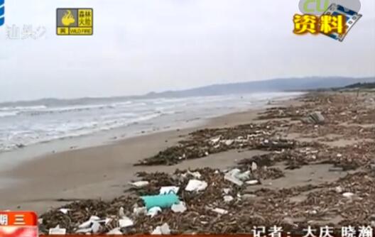 """开展""""环境提升年""""清理沙滩垃圾带 2016-03-02"""