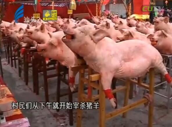 新亨硕联摆猪羊 构建和谐新农村 2017-2-13
