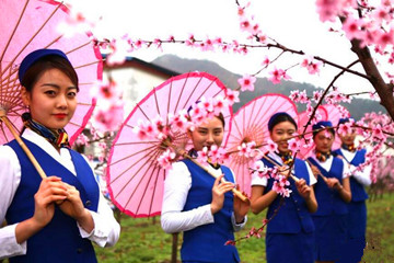 洛陽春雨賞桃花