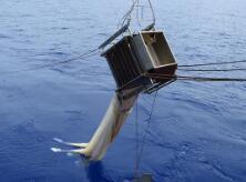 """""""科学""""号在西太平洋卡罗琳海山开展水体与生态调查"""