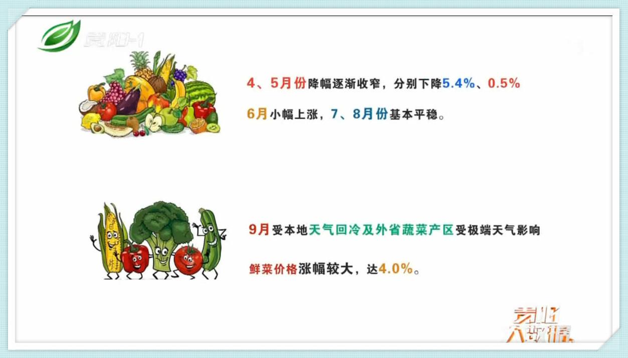 大数据带您看今年前三季度我市菜价