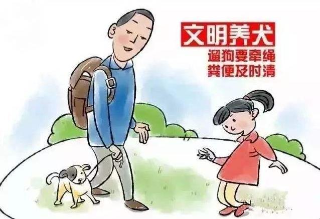创新监管方式,根治不文明养犬行为