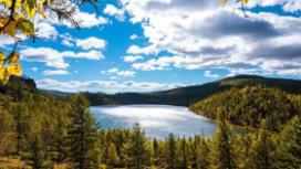 22个市县获评国家气候标志