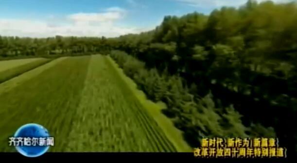 三北工程40年 齐齐哈尔筑起绿色长城