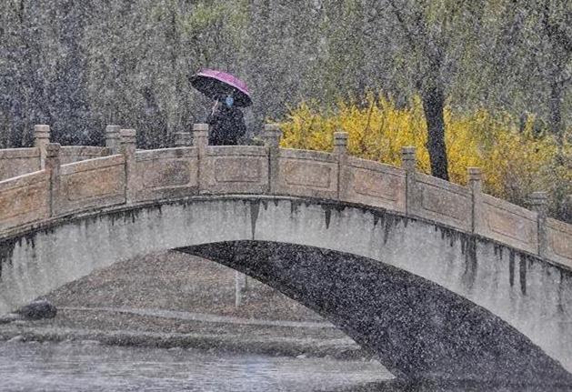 北京:燕山脚下春雪飘
