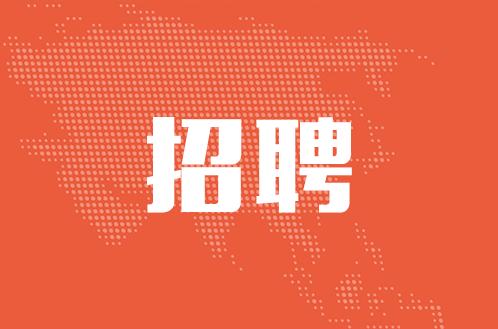 深圳IPTV招聘节目编辑