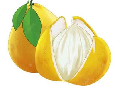 柚子皮、醋可除甲醛?不仅没效果还可能适得其反