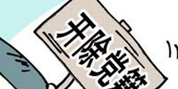 湖南2名厅级领导干部被开除党籍