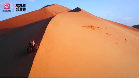 """这里有""""矿"""",原来你是这样的宝藏沙漠……深圳卫视《大漠绿色梦》今晚收官"""