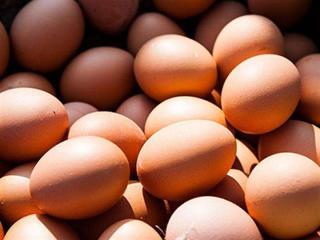芬兰研究称每天吃一个鸡蛋不会增加中风风险
