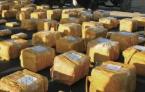 巴西官员随总统赴G20峰会 被查出走私39公斤古柯碱