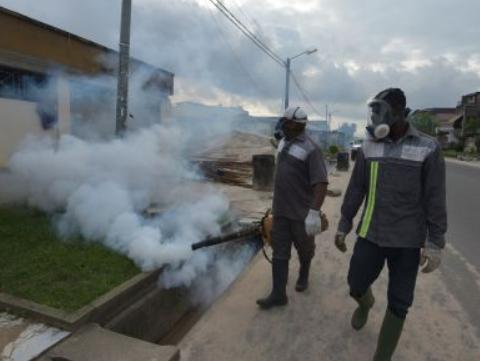 美國將向環境中釋放數百萬只轉基因蚊子,遭嚴厲批評