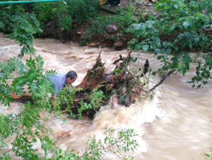 广东阳江出现今年首场特大暴雨 局地雨量破极值