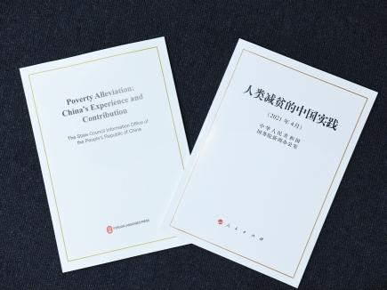 中国现行扶贫标准低于世界标准?国家乡村振兴局这样回应